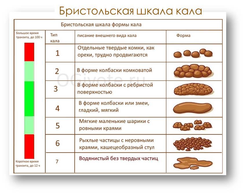 Бристольская шкала формы кала позволяет оценить осреднённое качество Вашего питания и работы ЖКТ