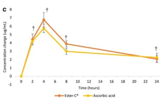 Изменение концентрации витамина С в плазме со временем