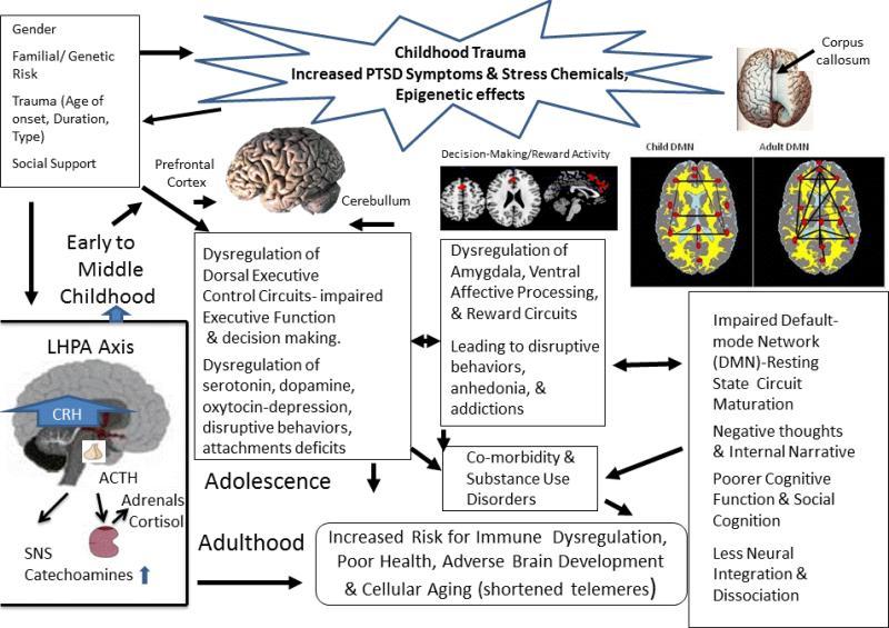 Психические травмы ускоряют старение