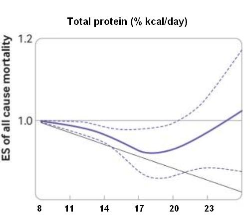 связь потребления белка со смертностью